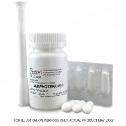 Amphotericin B Vaginal Suppositories Compounded