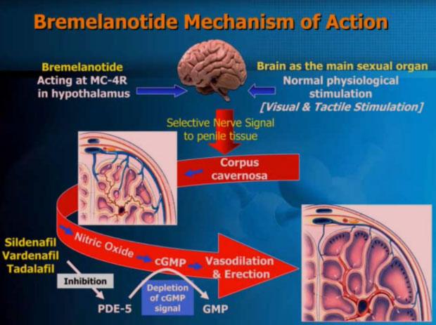 Bremelanotide Image 2